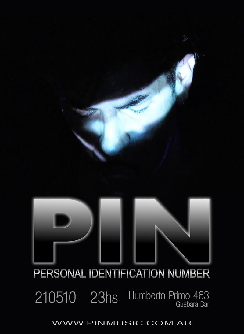 Diseño Afiche PIN