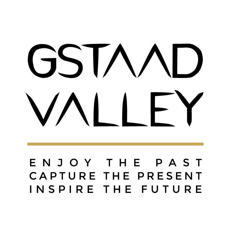 Diseño logo marca GV